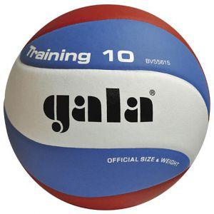 Volejbalový míč Gala Training 10