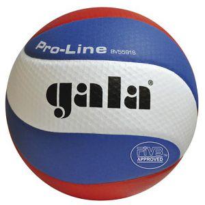 Volejbalový míč GALA Pro-Line 5591S